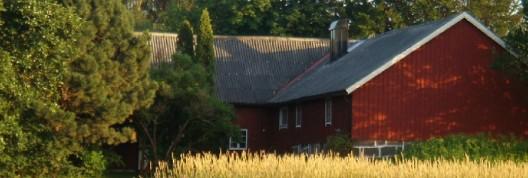 Schweden, Sommer 2012 / Land